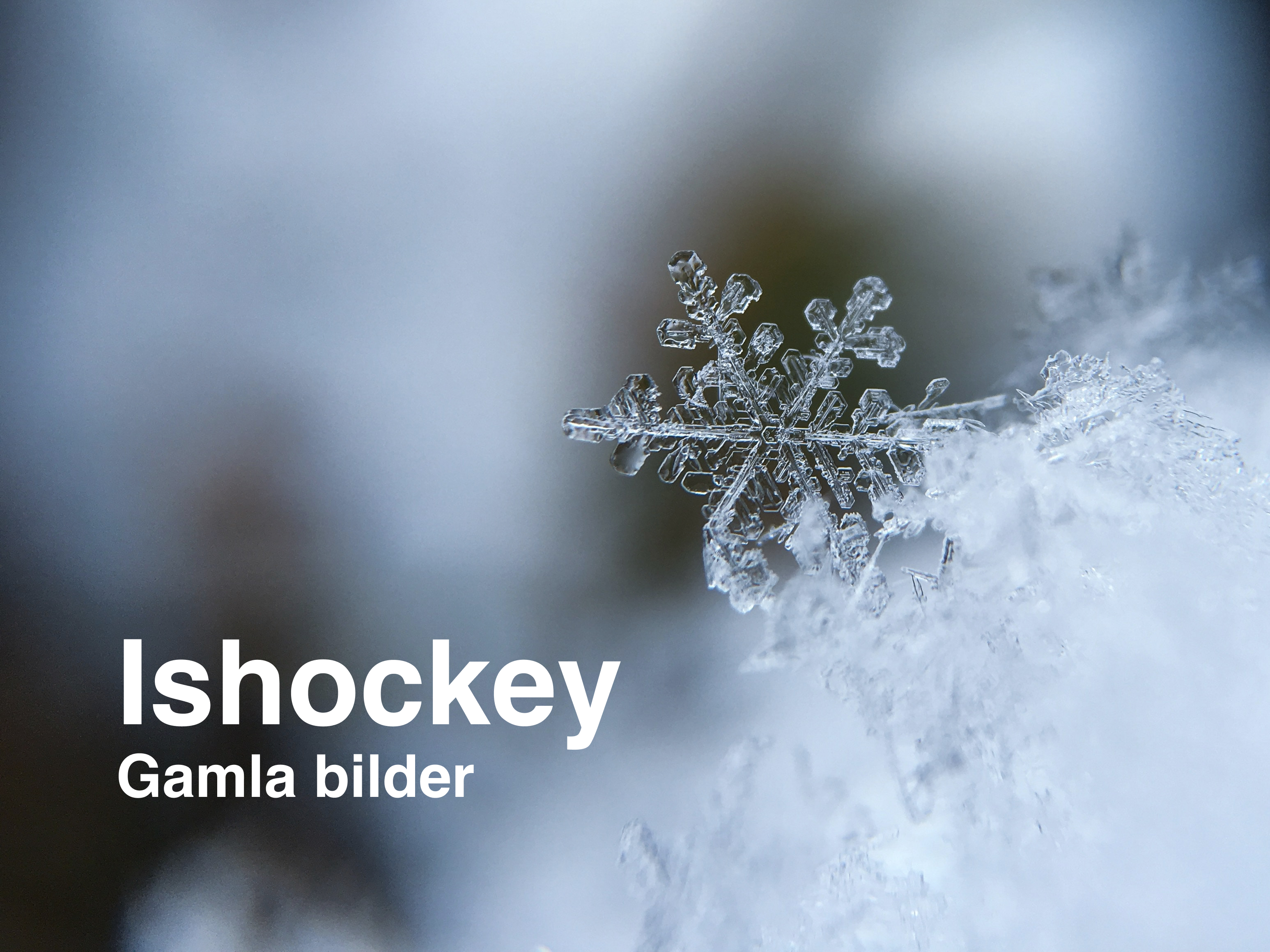 Gamla bilder Ishockey